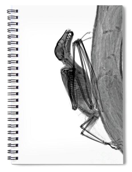C037/9604 Spiral Notebook