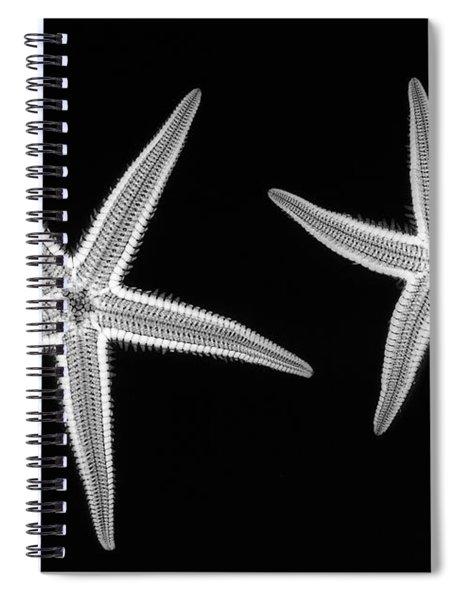 C038/4739 Spiral Notebook