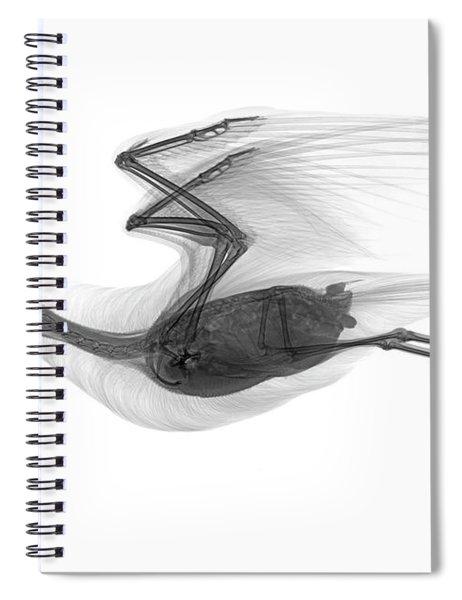C039/0616 Spiral Notebook