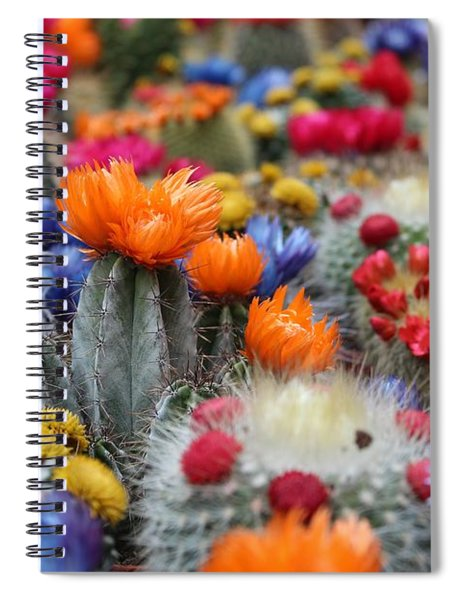 Cacti Flowers Spiral Notebook