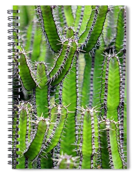 Cacti Wall Spiral Notebook