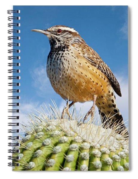 Cactus Wren On A Saguaro Cactus Spiral Notebook