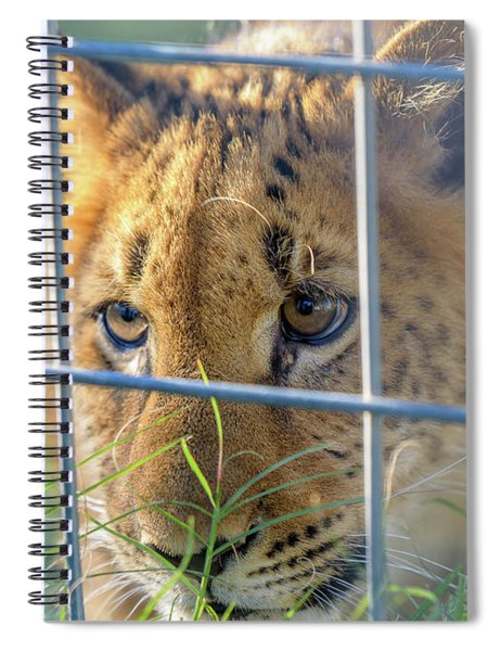 Caged Spiral Notebook