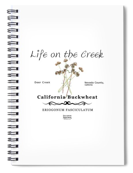California Buckwheat Spiral Notebook