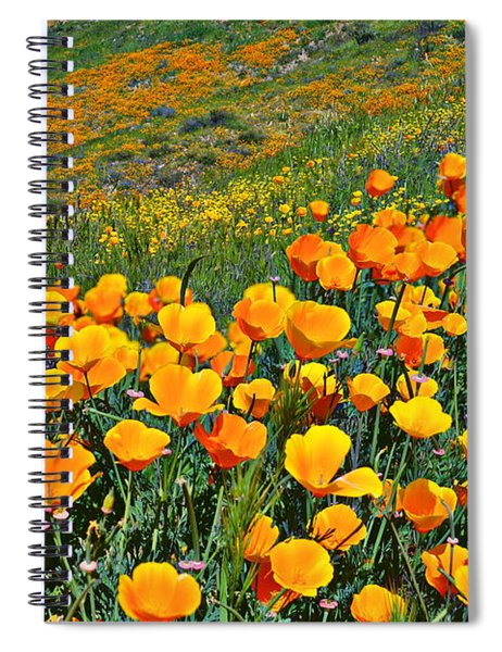 California Golden Poppies And Goldfields Spiral Notebook