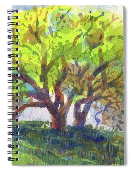 California Oak In Spring Spiral Notebook