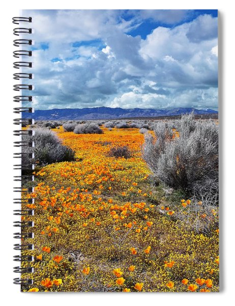 California Poppy Patch Spiral Notebook