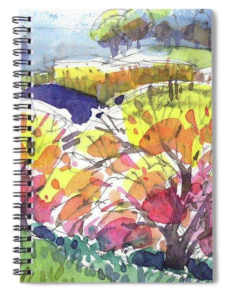 California Winter Light Spiral Notebook