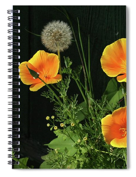 Can I Join Your Party Spiral Notebook