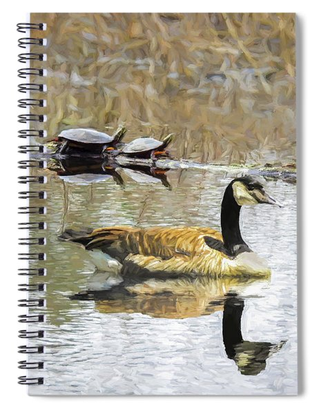 Canada Goose And Two Painted Turtles Together In A New England M Spiral Notebook