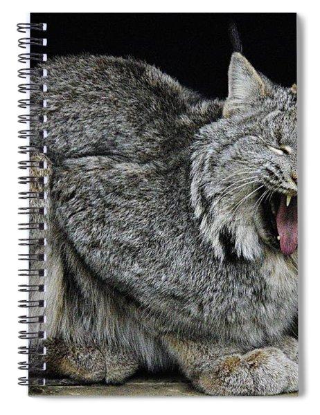 Canadian Lynx Spiral Notebook