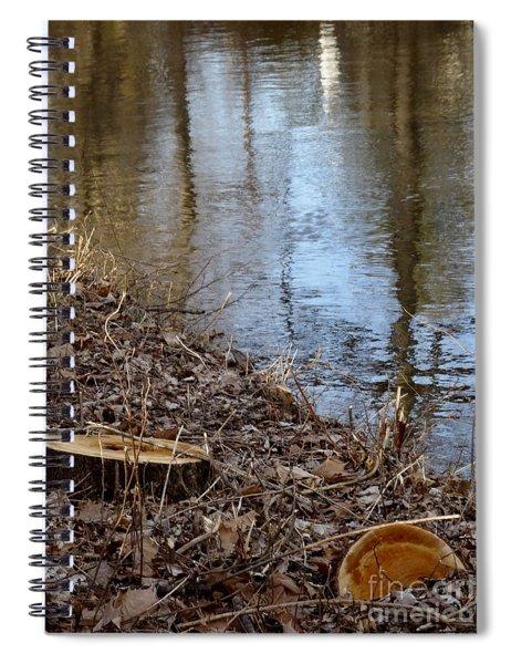 Canal Stumps-003 Spiral Notebook