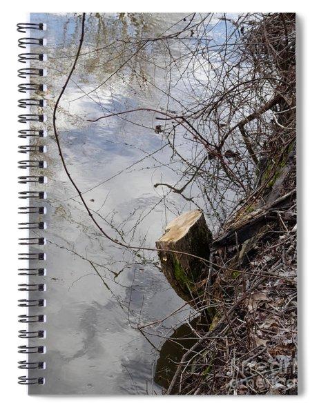Canal Stumps-005 Spiral Notebook