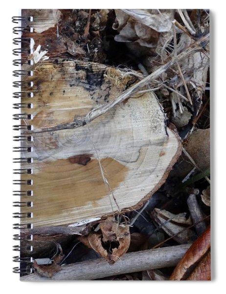 Canal Stumps-007 Spiral Notebook
