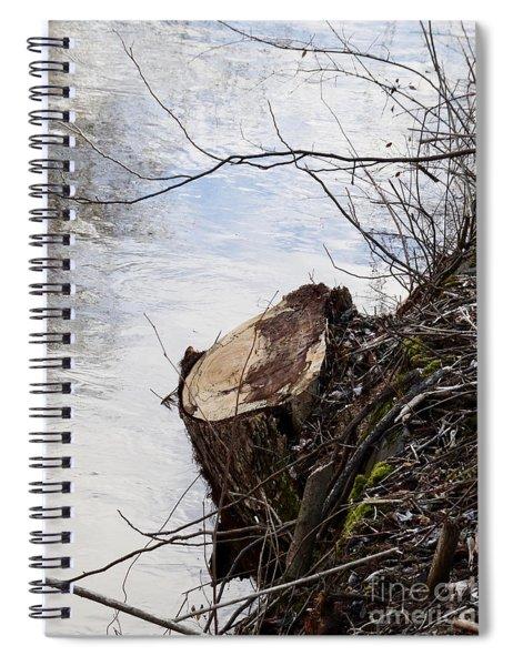 Canal Stumps-010 Spiral Notebook