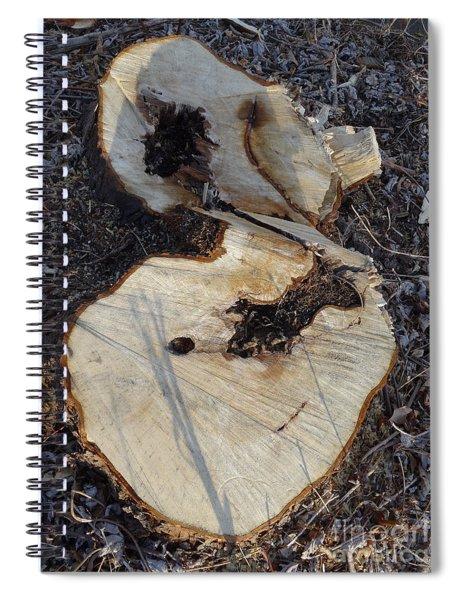 Canal Stumps-013 Spiral Notebook