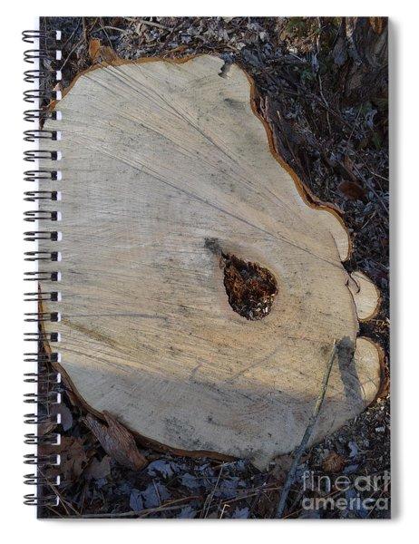 Canal Stumps-019 Spiral Notebook