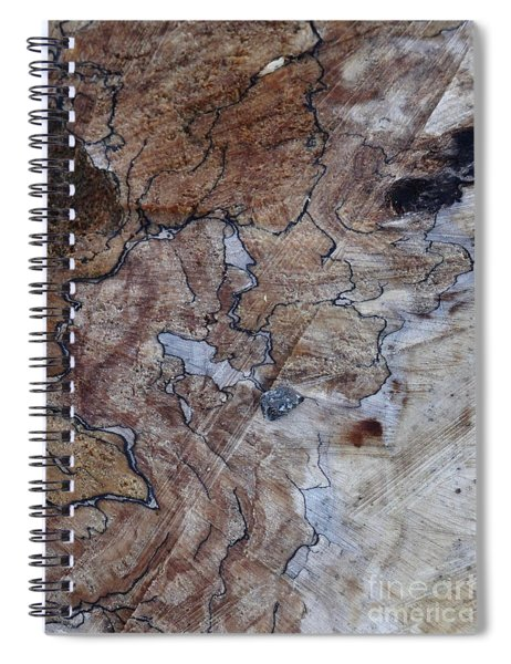 Canal Stumps-022 Map Spiral Notebook