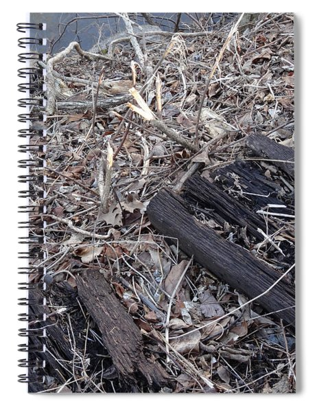 Canal Stumps-025 Legacy Spiral Notebook