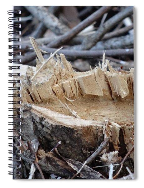 Canal Stumps-029 Spiral Notebook