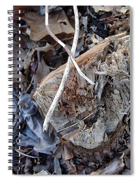 Canal Stumps-032 Spiral Notebook