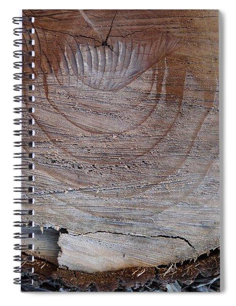 Canal Stumps-035 Spiral Notebook