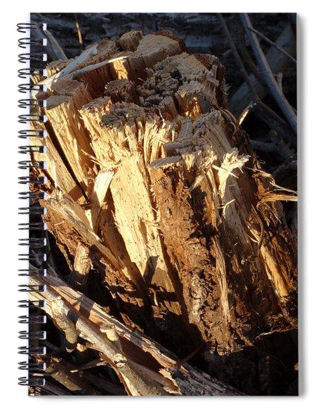 Canal Stumps-036 Spiral Notebook