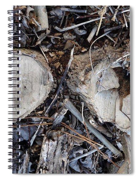 Canal Stumps-040 Spiral Notebook