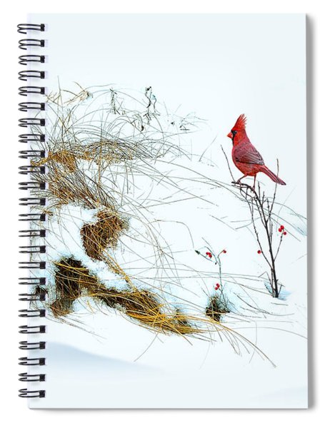Cardinal Angel In The Snow Spiral Notebook