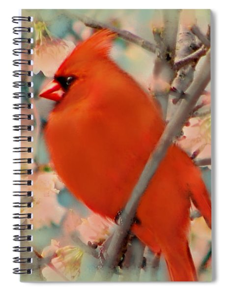Cardinal Spring Spiral Notebook