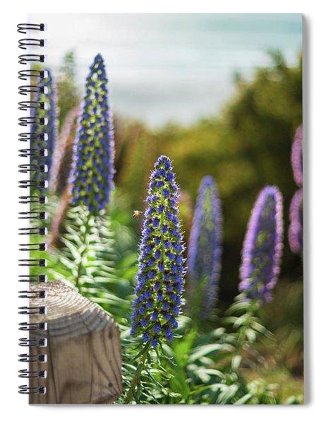 Carmel By The Sea Echium Flowers Beach Spiral Notebook