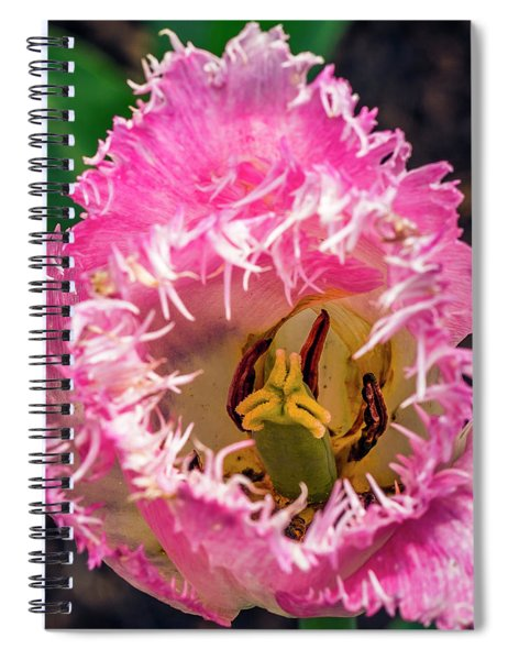 Carnivorous? Spiral Notebook