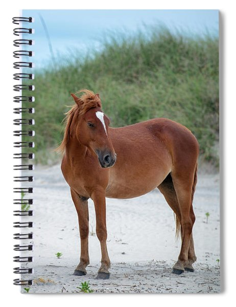 Carova Wild Horses - Colonial Spanish Mustangs Spiral Notebook