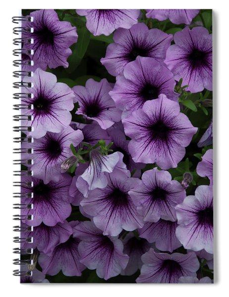 Cascade In Violet Spiral Notebook
