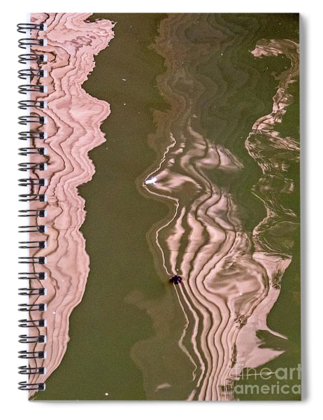 Cat Reflection Spiral Notebook