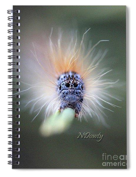 Caterpillar Face Spiral Notebook