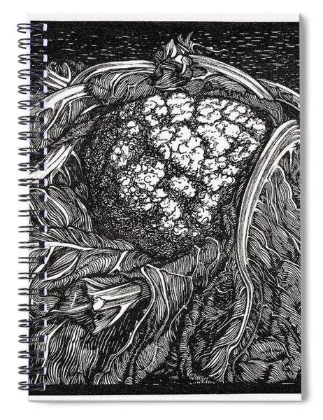 Cauliflower By Julie De Graag  1877 1924   Spiral Notebook
