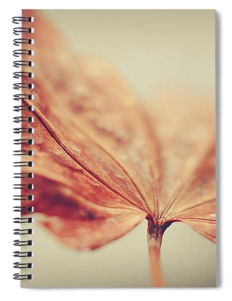 Central Focus Spiral Notebook