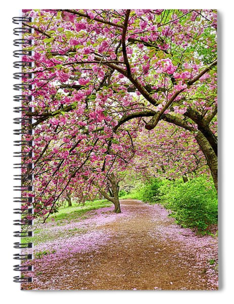 Central Park Cherry Blossoms Spiral Notebook