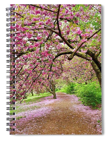 Central Park Cherry Blossoms Spiral Notebook