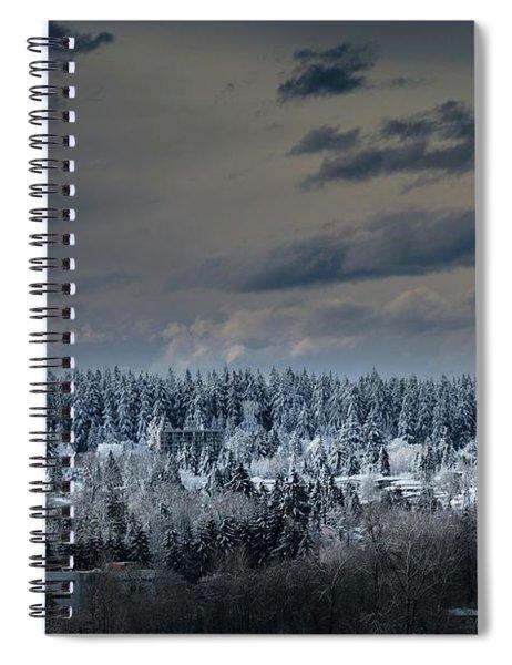 Central Park Winter Spiral Notebook
