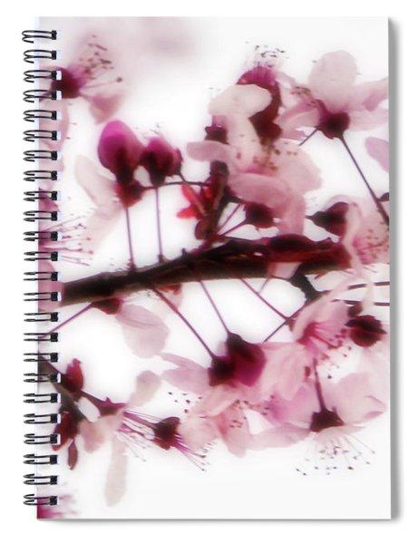 Cherry Triptych Center Panel Spiral Notebook