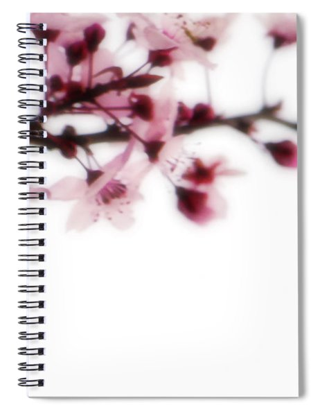 Cherry Triptych Right Panel Spiral Notebook