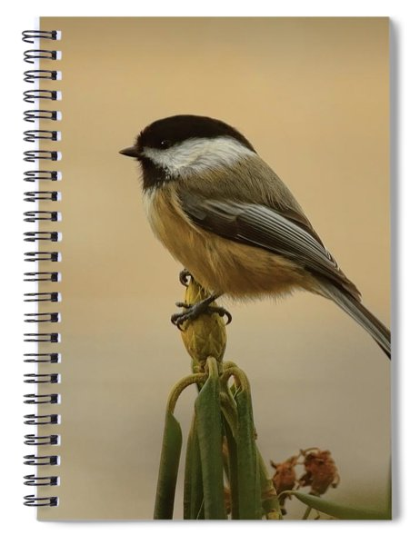 Chickadee On Rhododendron Spiral Notebook