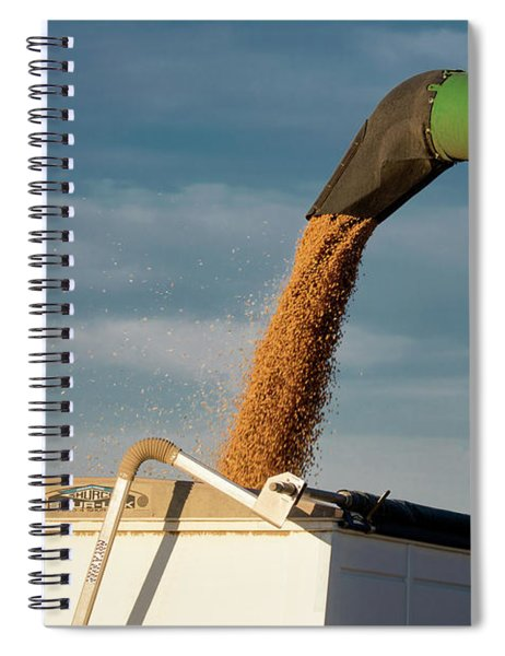 Chickpeas Auger Spiral Notebook