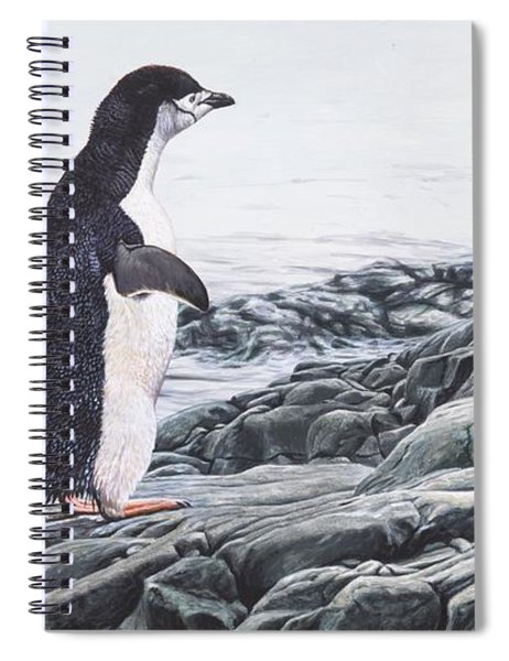 Spiral Notebook featuring the painting Chinstrap Penguin On A Rock By Alan M Hunt by Alan M Hunt