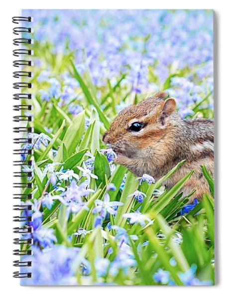 Chipmunk On Flowers Spiral Notebook