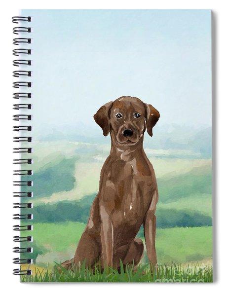 Chocolate Labrador Spiral Notebook