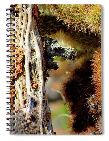 Cholla Cactus Spiral Notebook