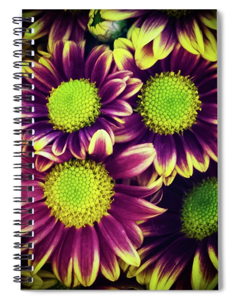 Chrisantemum Spiral Notebook